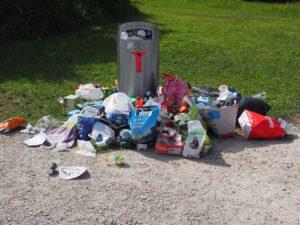 Trash Removal Garbage Removal